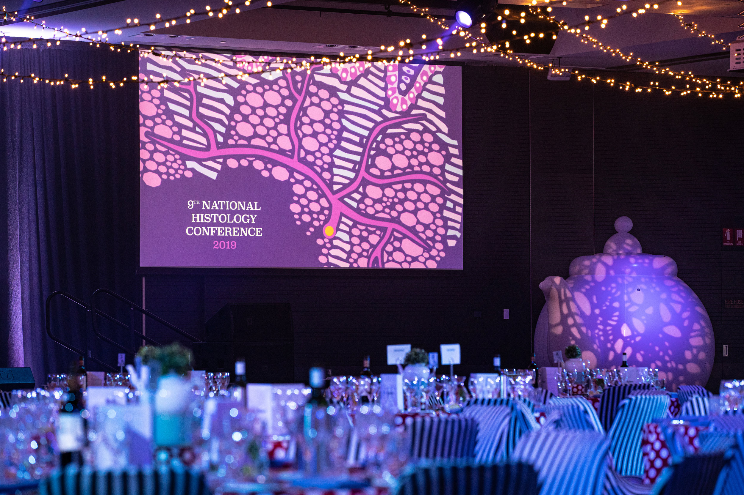 National Histology Conference 2019 | Gala Dinner - Through the Looking Glass | sponsored by Agilent  photo credit: asbCreative Photography