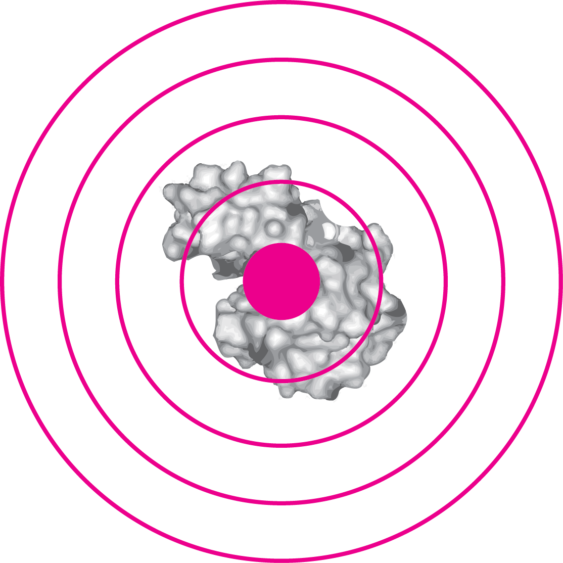 molecular_target.png