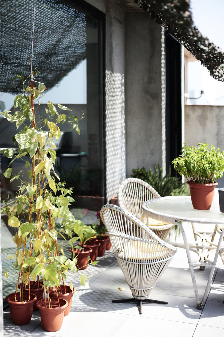 GeorgKayser_architecture_interiordesign_residencial_pallars_9.jpeg