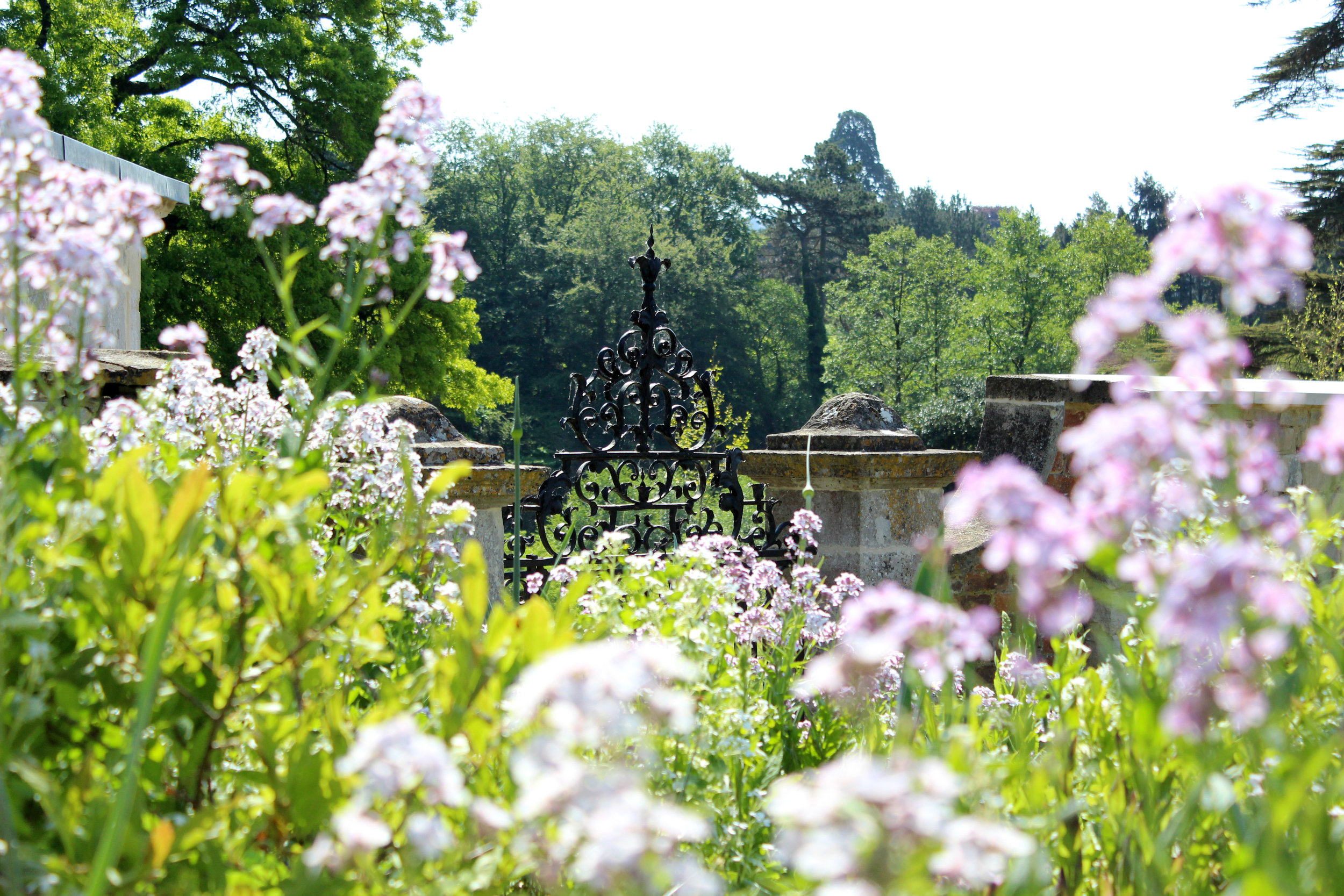 pHOTOGRAPH OF THE WALLED GARDEN SHOWING GLORIOUS BLOOMS OF FLOWERS WITH THE HISTORIC GATE IN THE BACKGROUND SET AGAINST THE ARBORETUM OF THE PARK