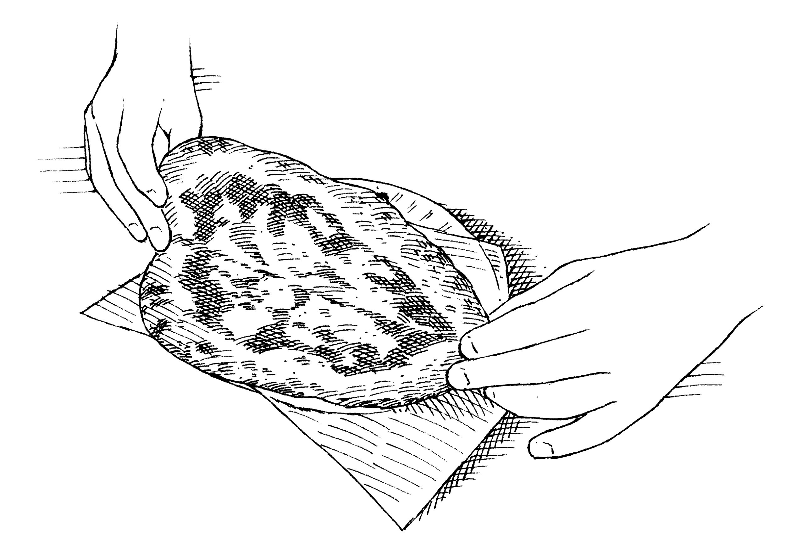 Illustrations by  John Burgoyne