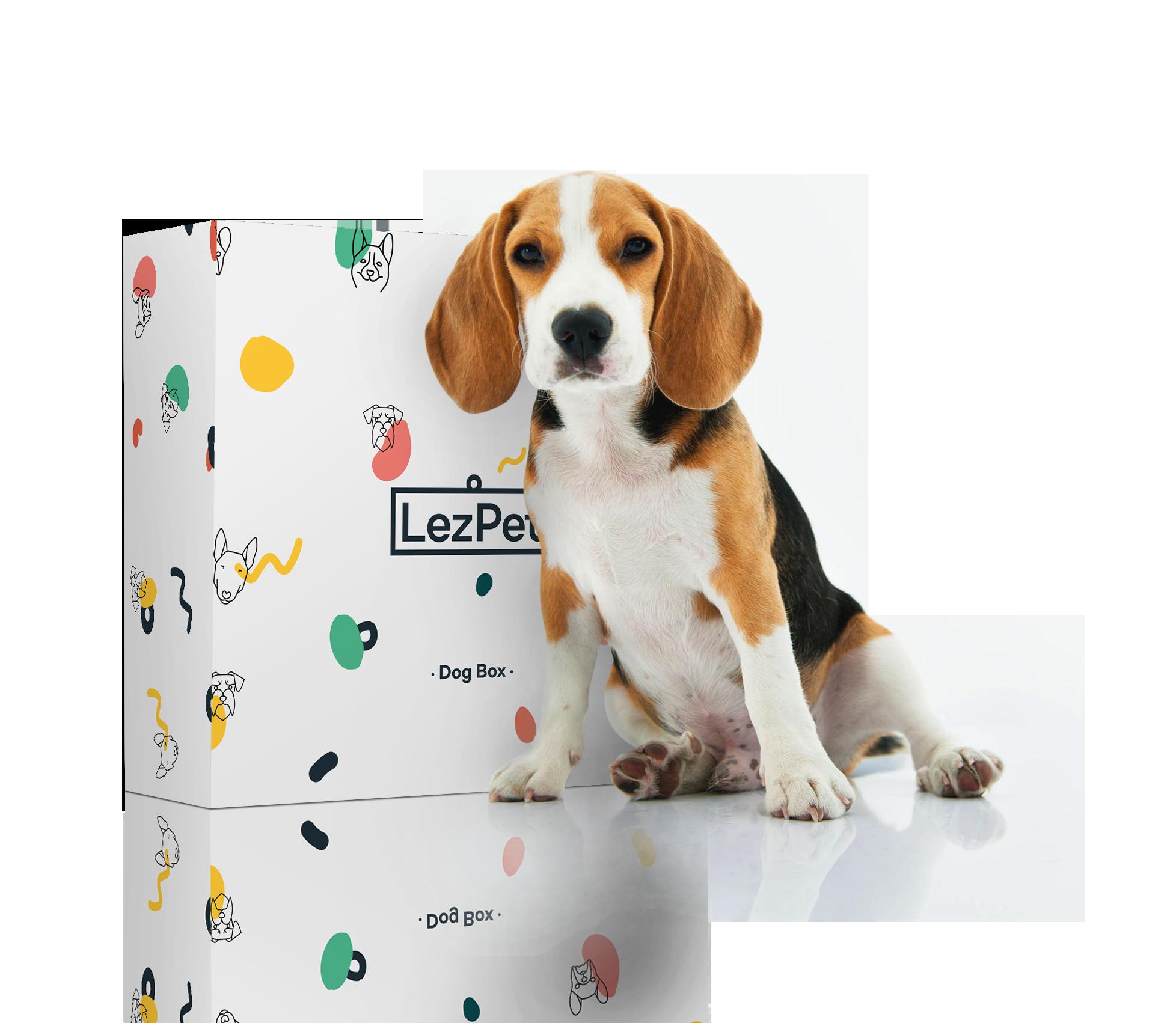 Il Regalo Originale. Il primo kit per cucinare al cane. - LezPet è il primo kit al mondo che racchiude in una box tutto ciò che ti serve per preparare deliziosi e sani pranzetti per il tuo cane. Non avrai bisogno di altro.
