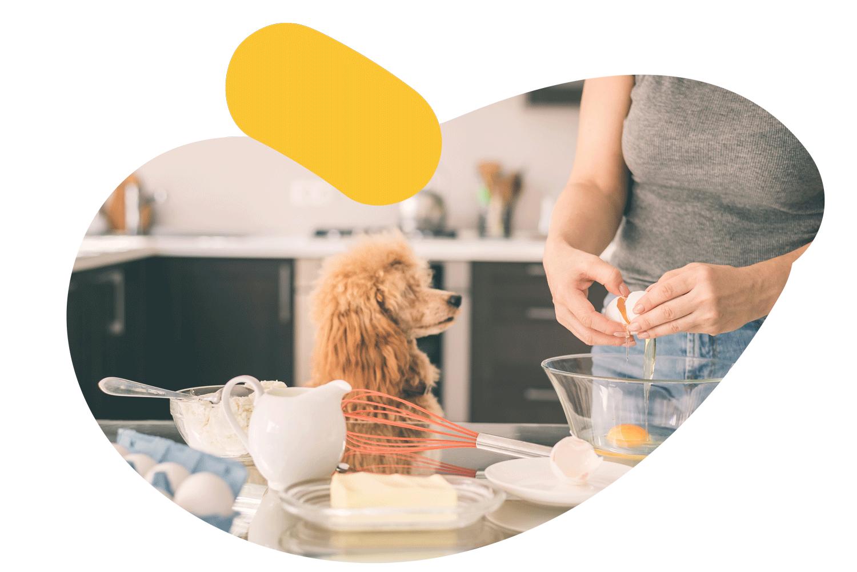 Perché pentole dedicate? Evitano la contaminazione! - Sai che il tuo cane ha una lista di alimenti da evitare assolutamente. Per evitare la contaminazione con alimenti di uso quotidiano abbiamo studiato e realizzato 2 strumenti di cottura (pentola e casseruola) dedicati alla preparazione dei cibi per i nostri amici.