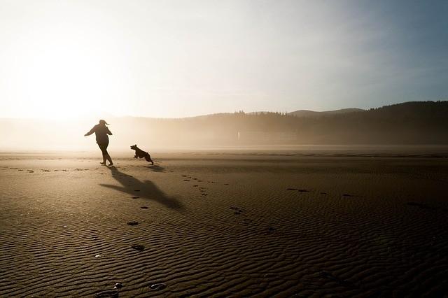 Ricordi delle vacanze! 😍 -- #instadaily #dogoftheday #doglife #puppypalace #dogs #doglover #pets #dogsofinstagram #cane #doglovers #doggy #doggie #ilovemydog #pup #dogs_of_instagram #puppygram #doggies #lezpet #dogstagram #dogscorner #instagramdogs #instapuppy #pet #doglove #puppy #dogslife #dog