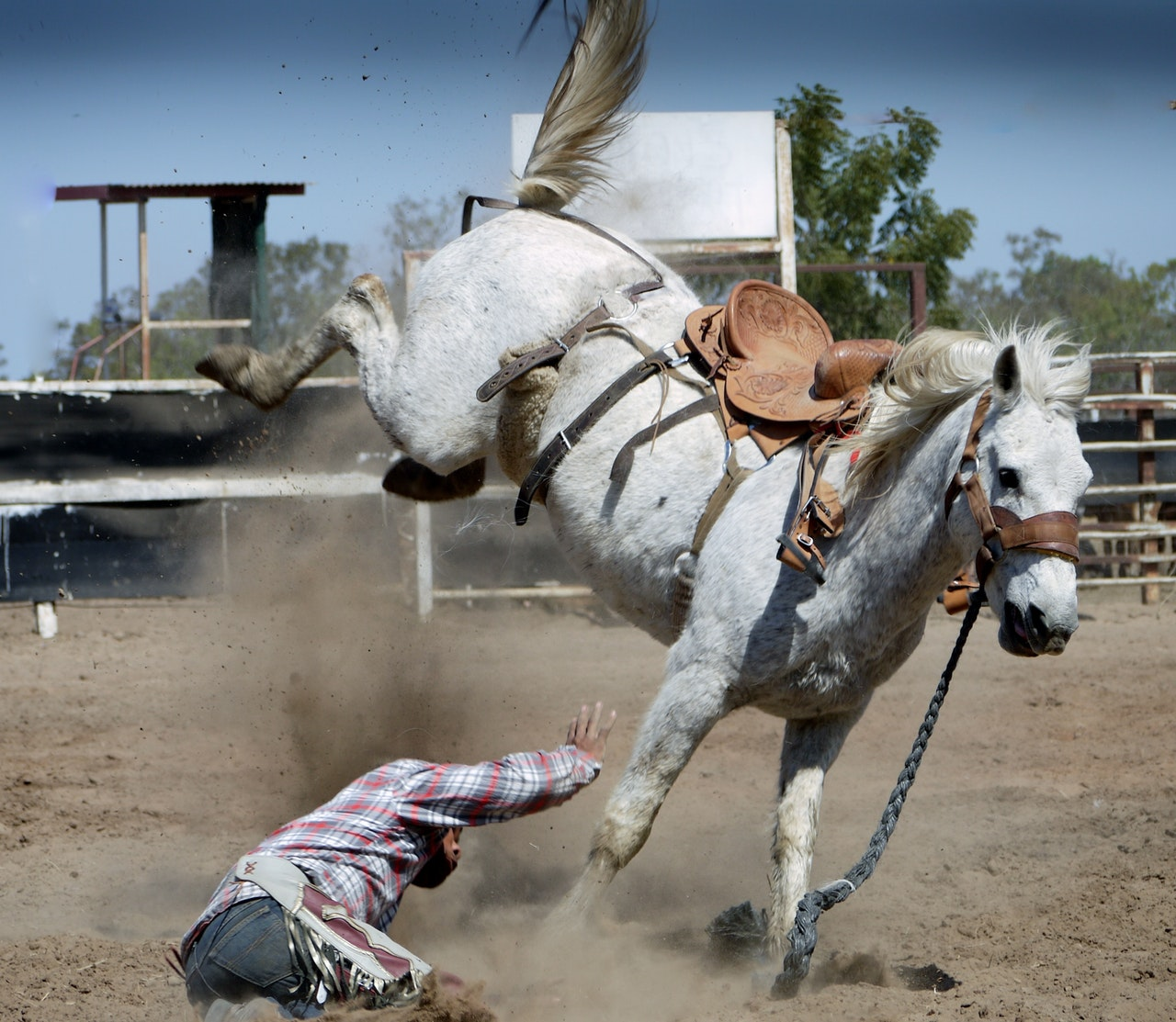 What if a fallen rider never got back on the horse? -