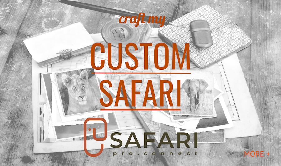 CraftSafari Final.png