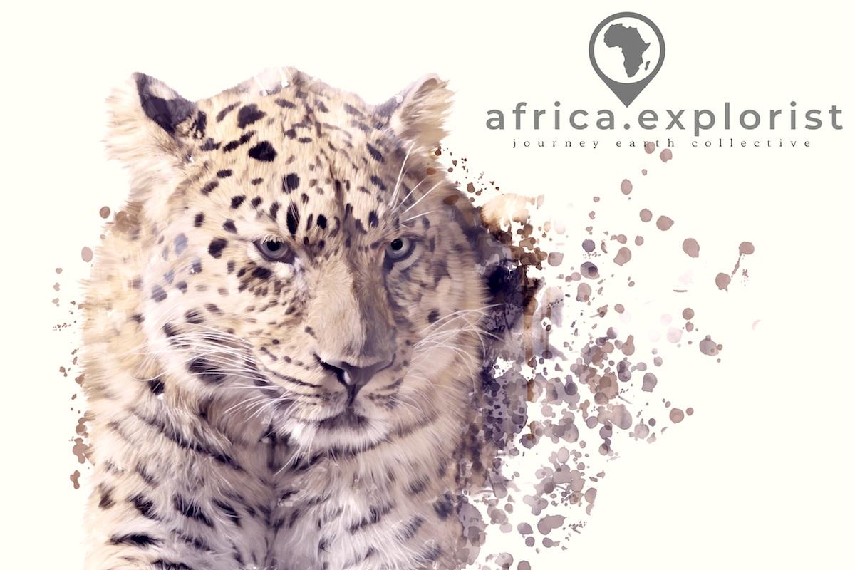 - suggested elewana safaris