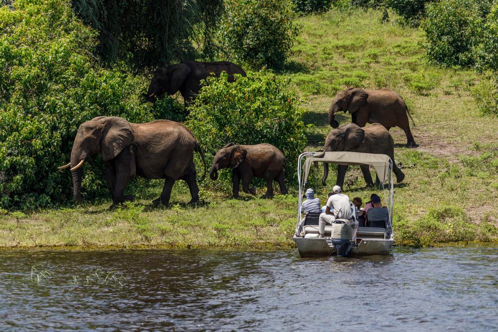 heritage explorist portfolio - zambia