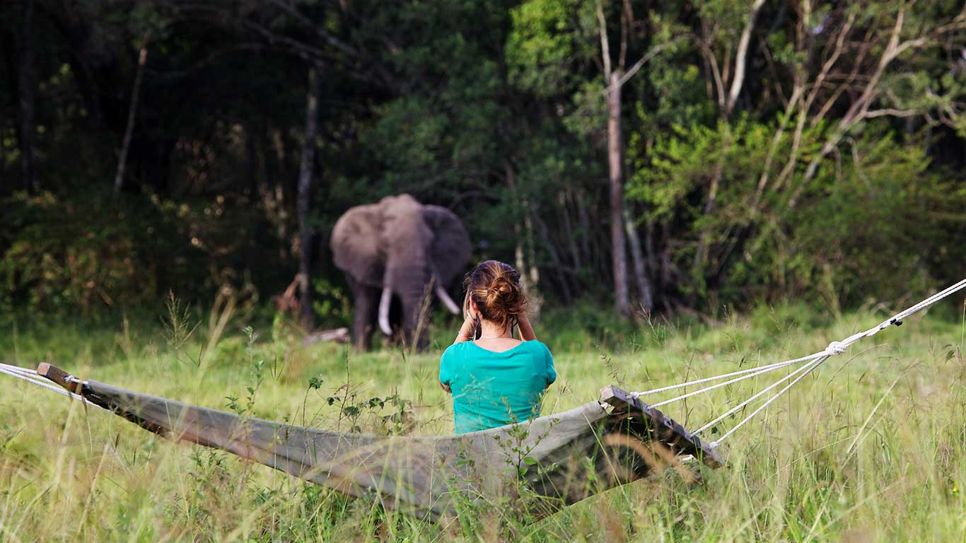 Elephant-Pepper-Camp---wildlife-viewing-from-the-camp.jpg
