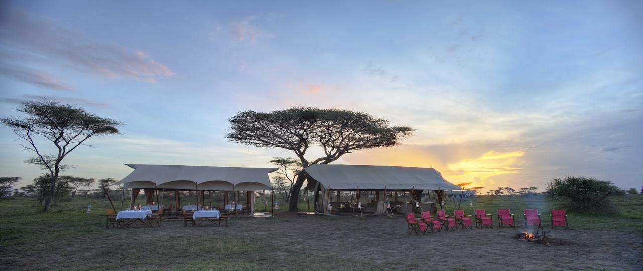 Serengeti_UC_2014-181.1.jpg