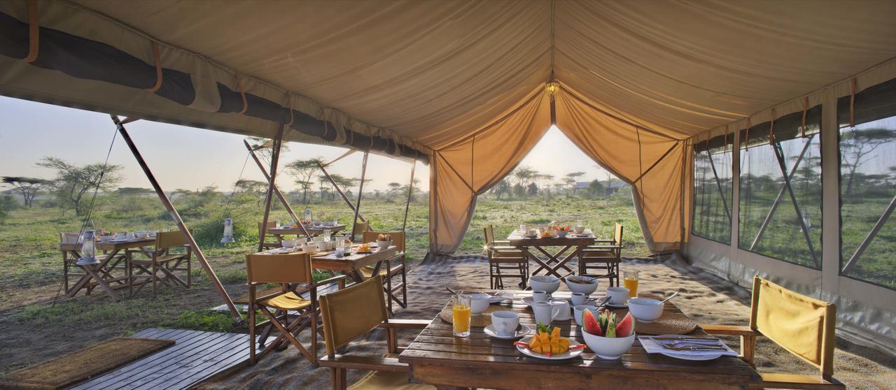 Serengeti_UC_2014-185.1.jpg