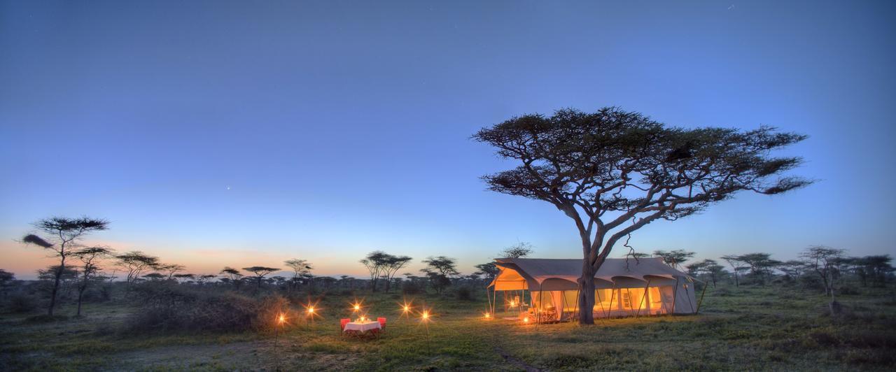 Serengeti_UC_2014-226.1.jpg