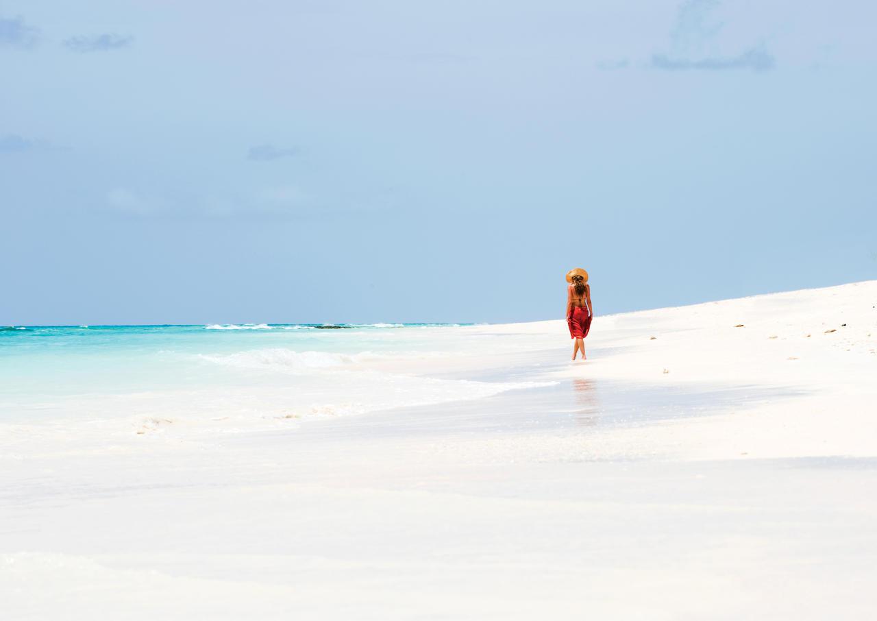 vamizi-island-beach-walk.jpg