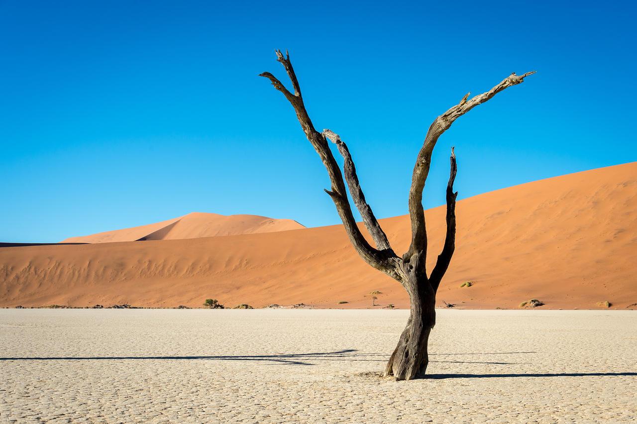 Kulala-Namib_2014-12-171e.jpg
