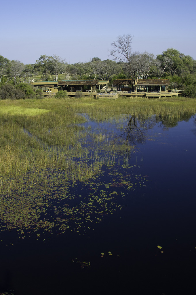 Vumbura_Plains_Camp-2011-07-007.jpg