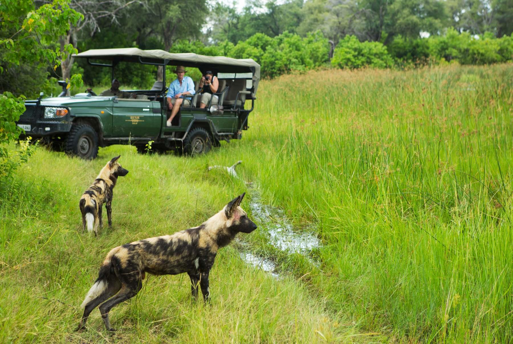 selindacamp-safari-experience-greatplainsconservation-2.jpg
