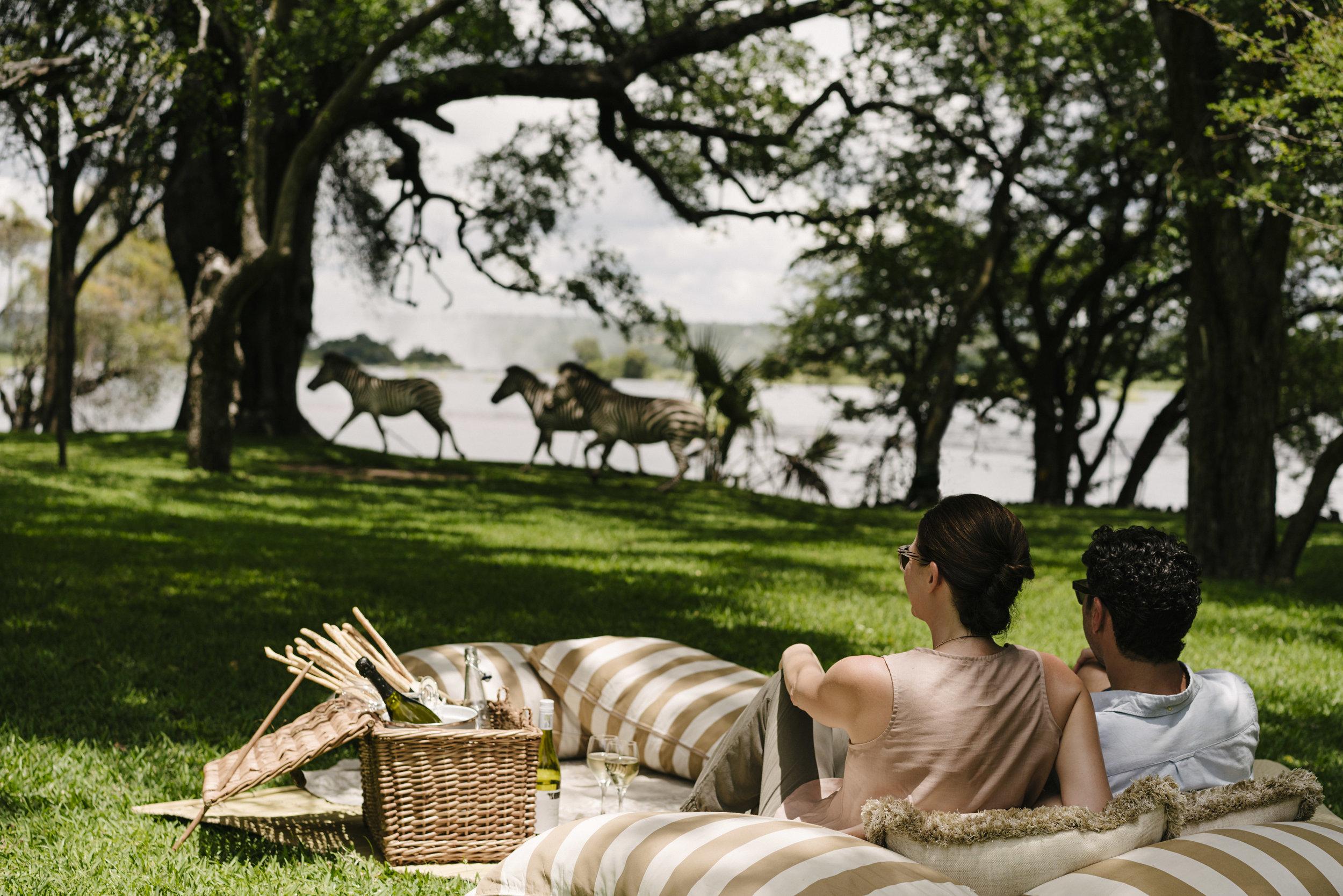 rl_dining_picnic_zebras_lifestyle_05_g_a_h1.jpg