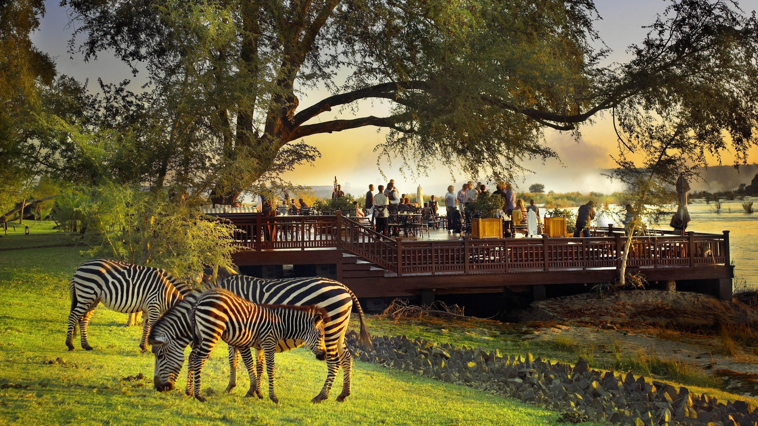 The Sundeck with zebras in the foreground1.jpg