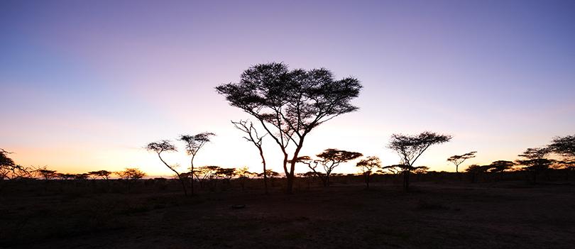 Olakira-Camp-south-Landscape-029.jpg