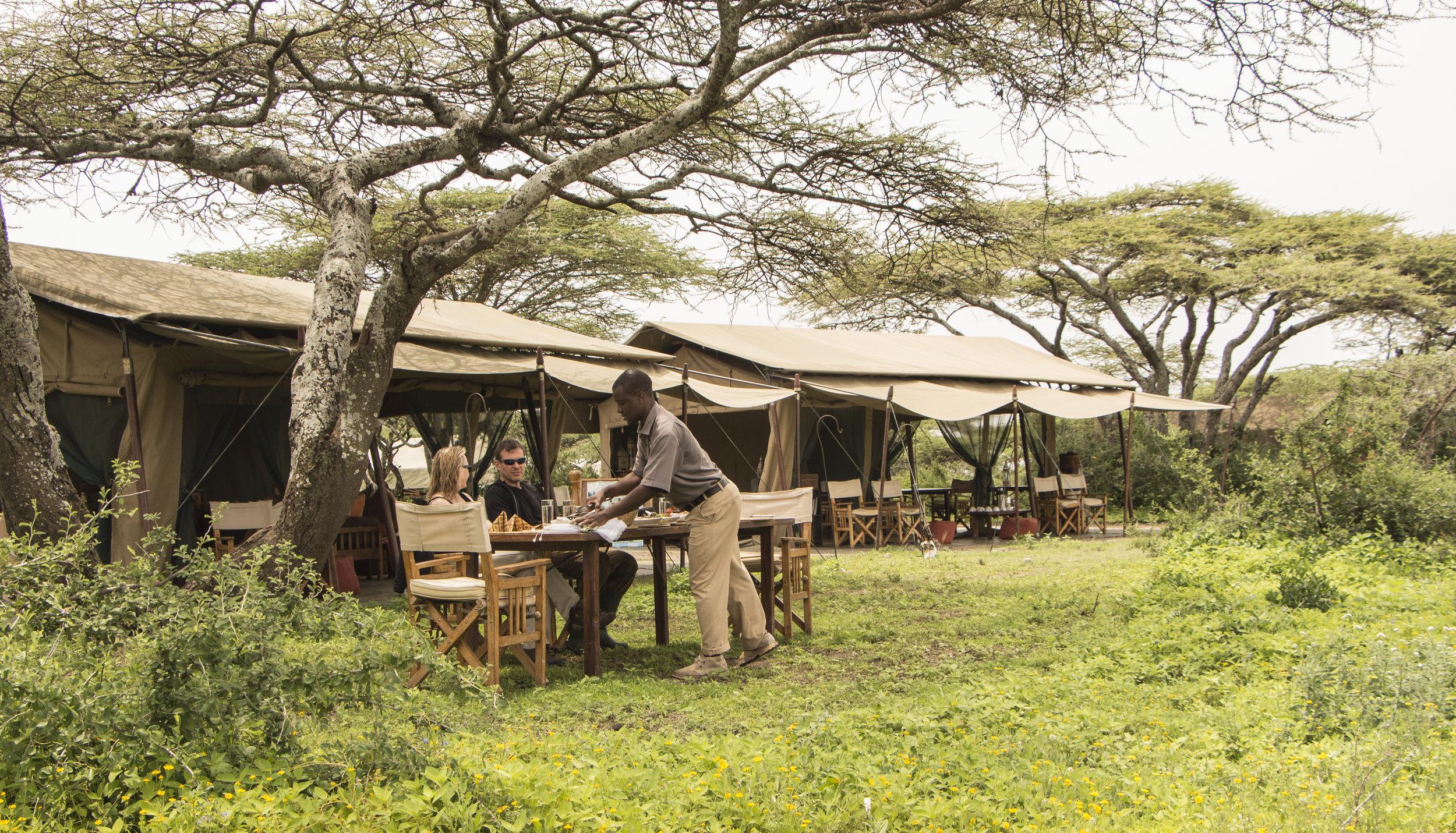 Ubuntu-Camp-lunch-under-acacia-tree-HR.jpg