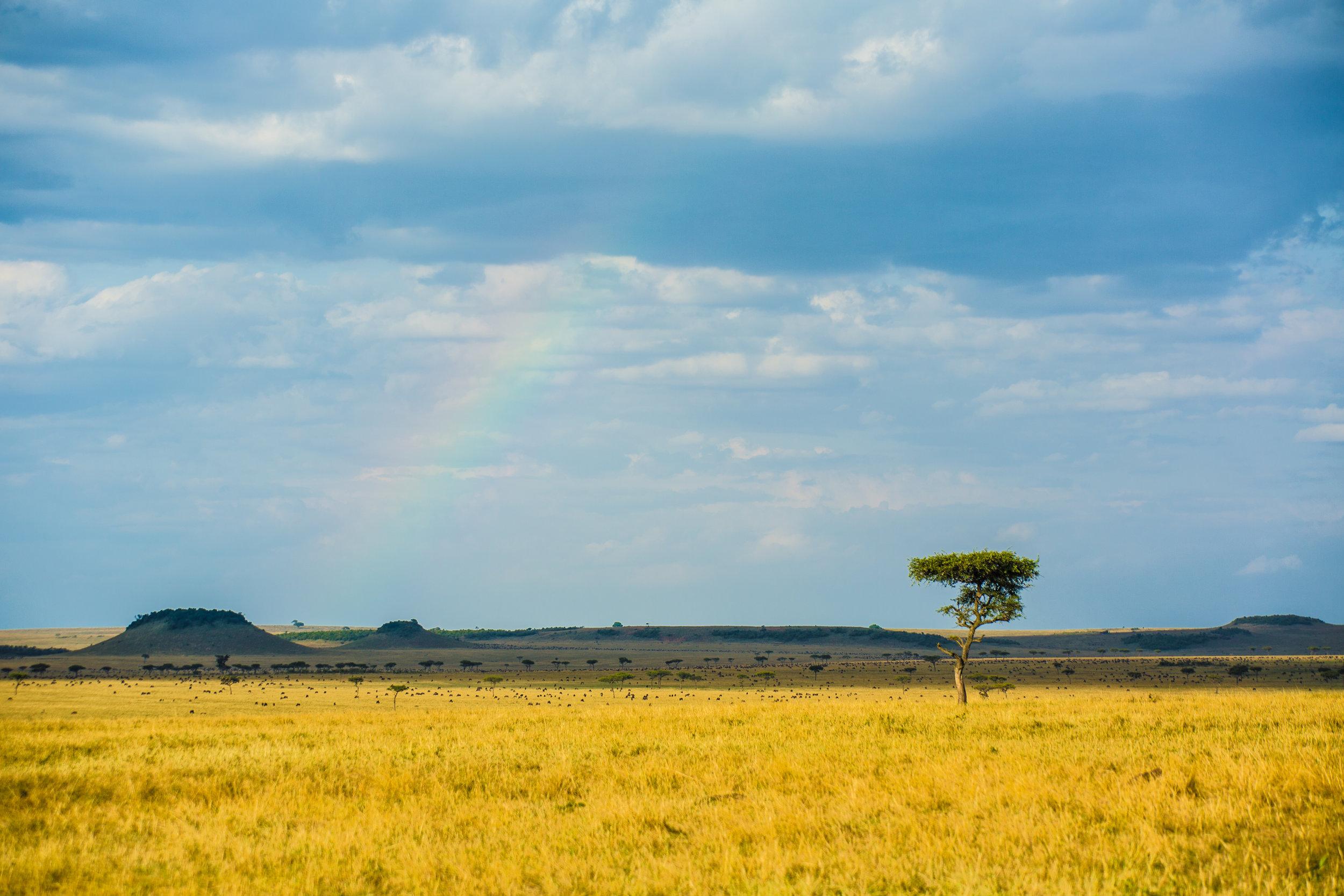 plains-rainbow-Serengeti-Safari.jpg