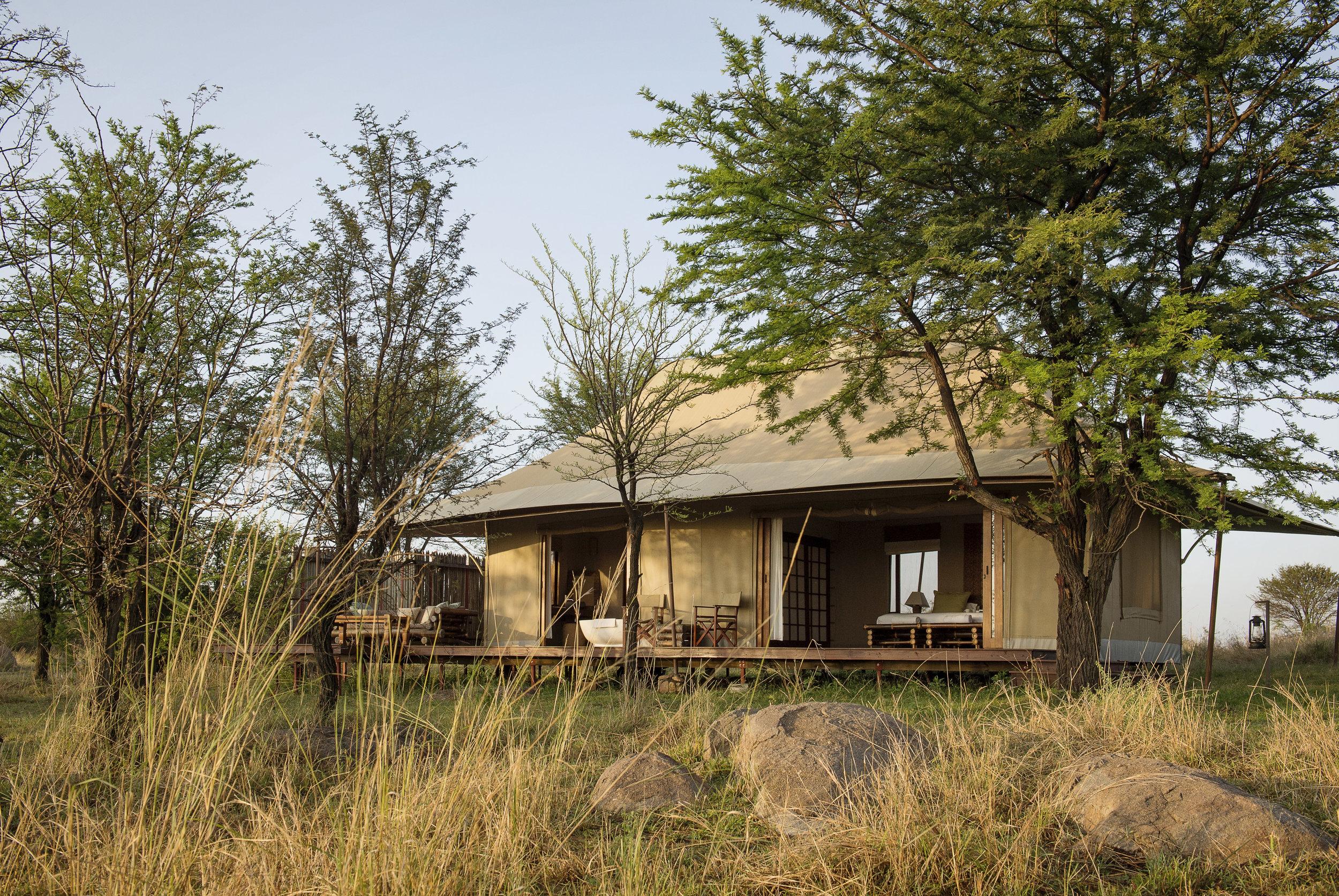 Sayari-Camp-Guest-Tent-Bedroom-Exterior-Eliza-Deacon-MR.jpg