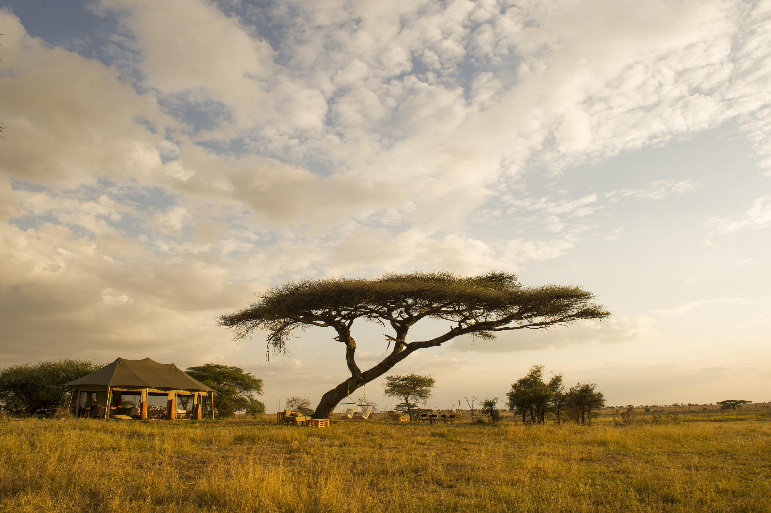 Namiri-Plains-Mess-Tent-Outside-Area-Paul-Joynson-Hicks-MR.jpg