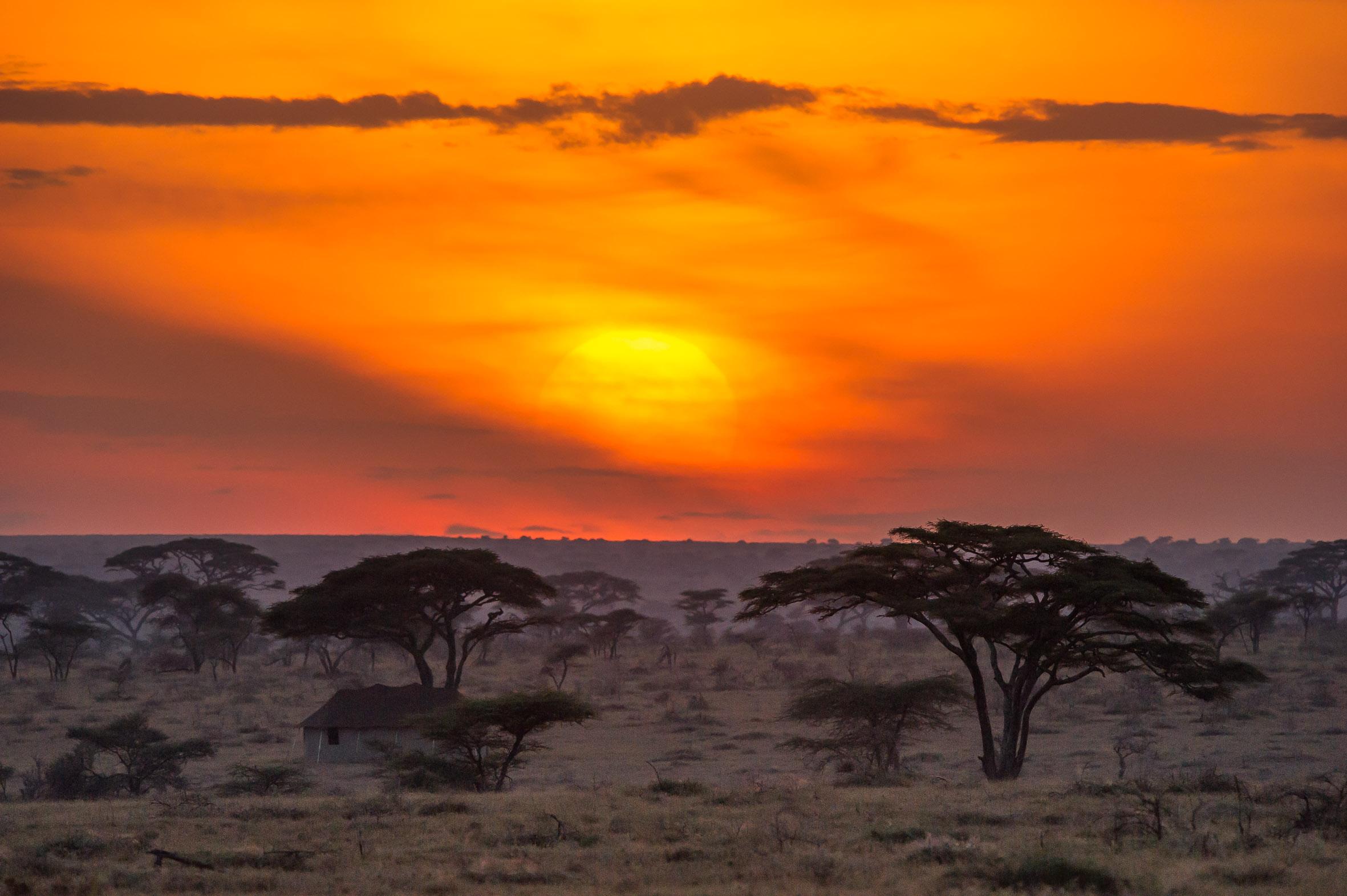 Serengeti-Namiri-Plains-Scenery-Sunset-Paul-Joynson-Hicks-LR.jpg