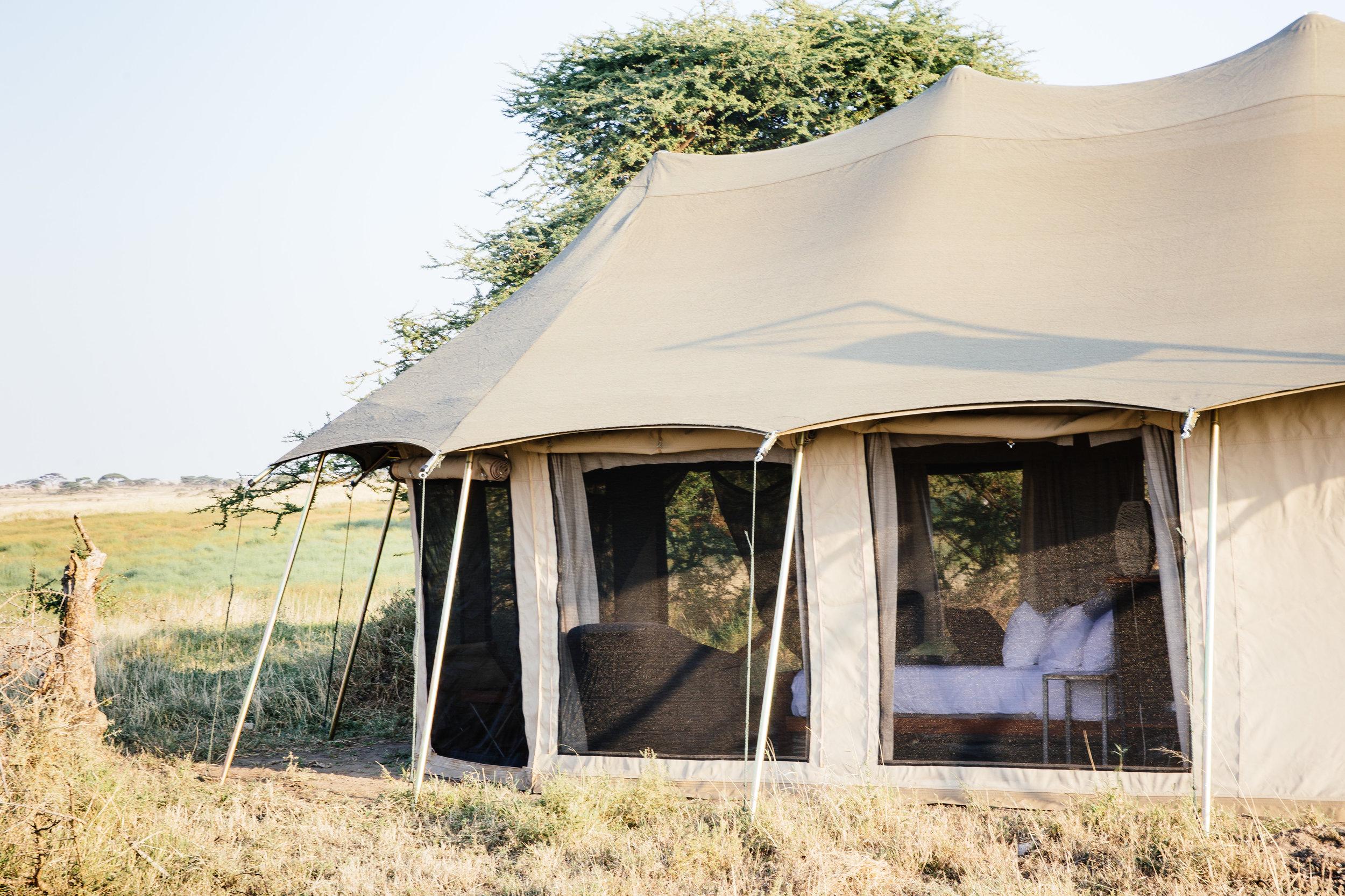 Namiri-Plains-view-guest-tent-exterior-looking-in-Tanveer-Badal-HR.jpg