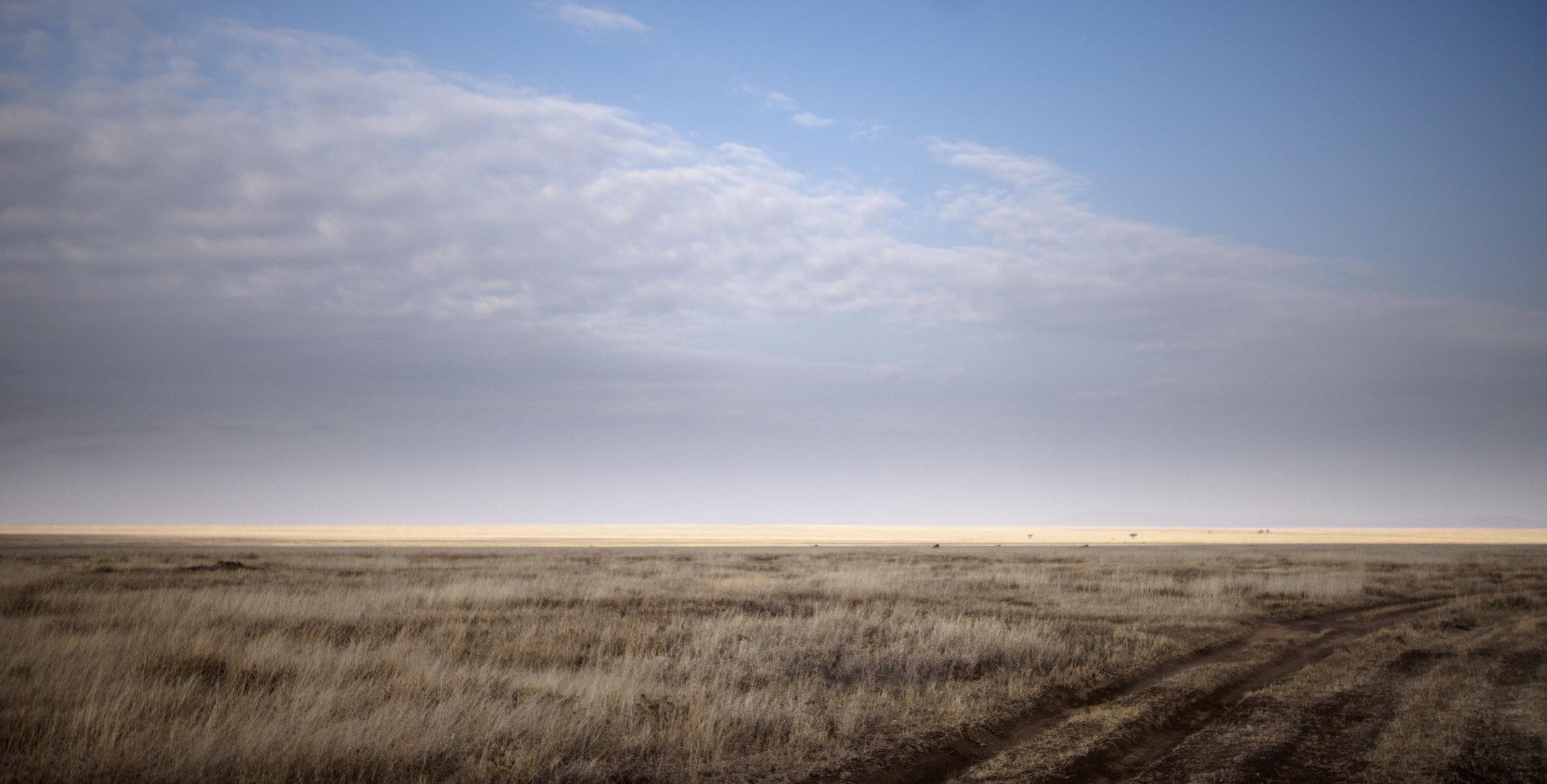 Serengeti-Scenery-Eric-Frank-MR.jpg