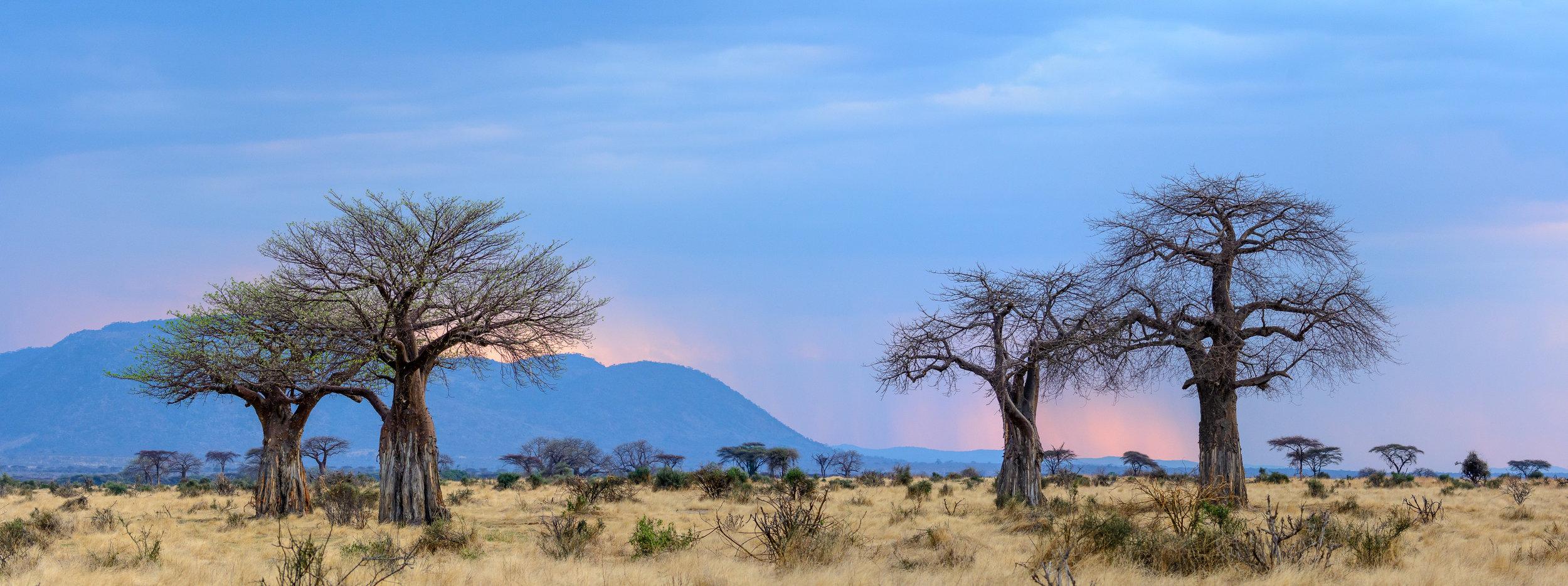 Jabali-Ridge-sunset-scenery.jpg