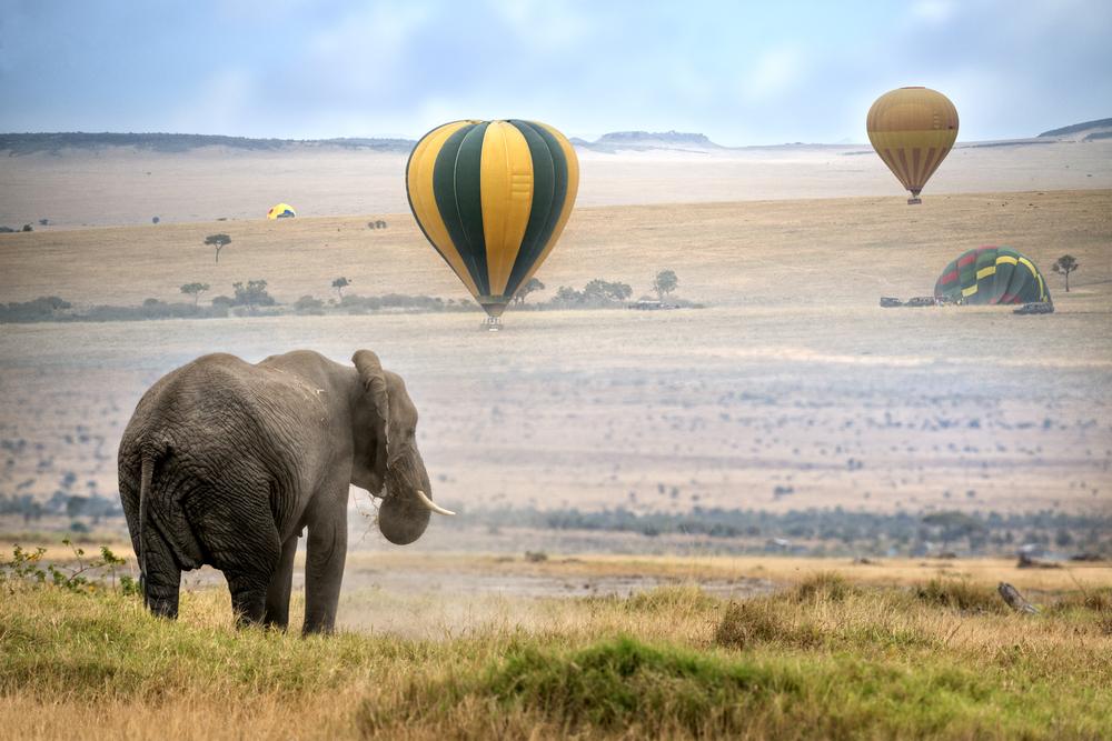 serengeti safaris - best classic safaris