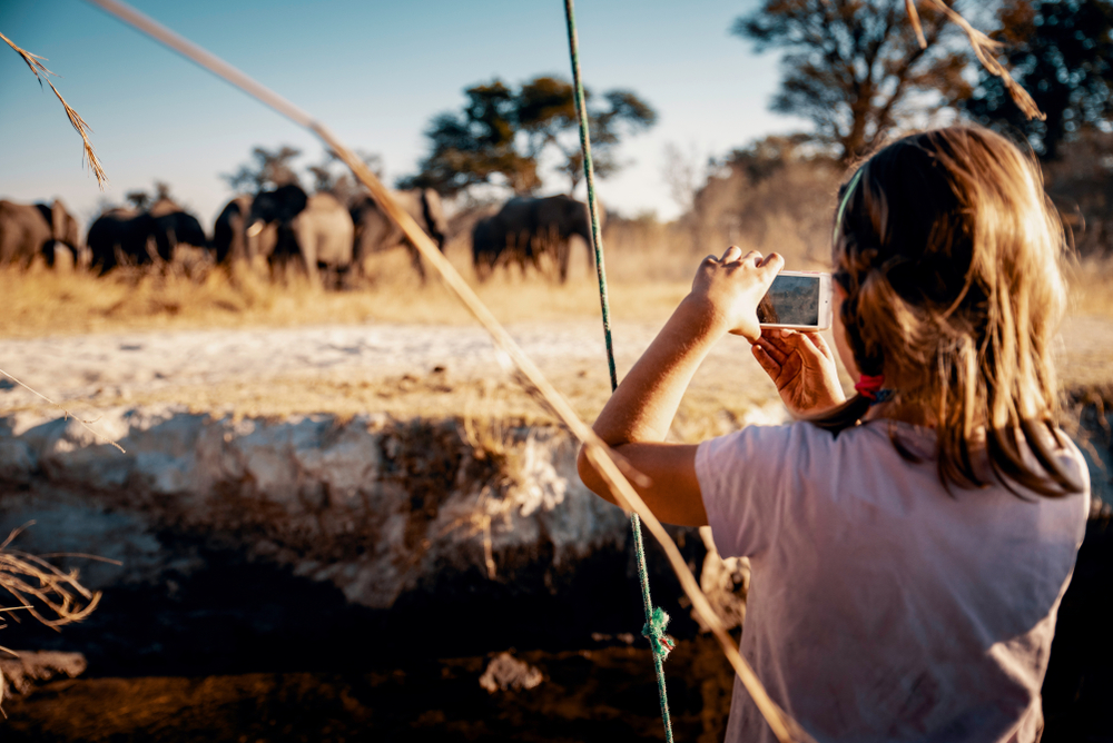 tanzania experiences - great migration