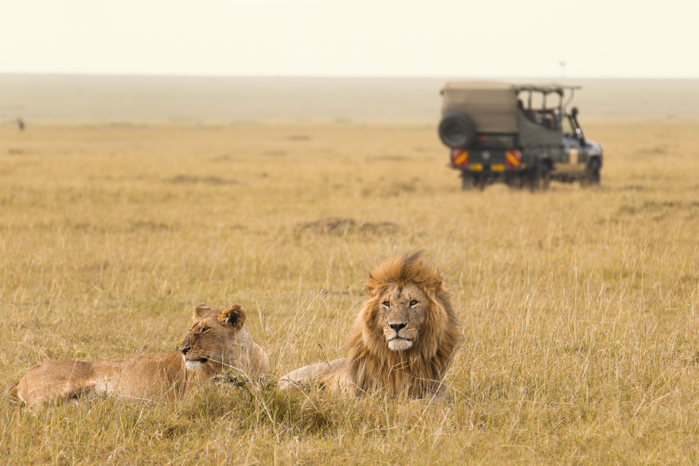our best itineraries - tanzania