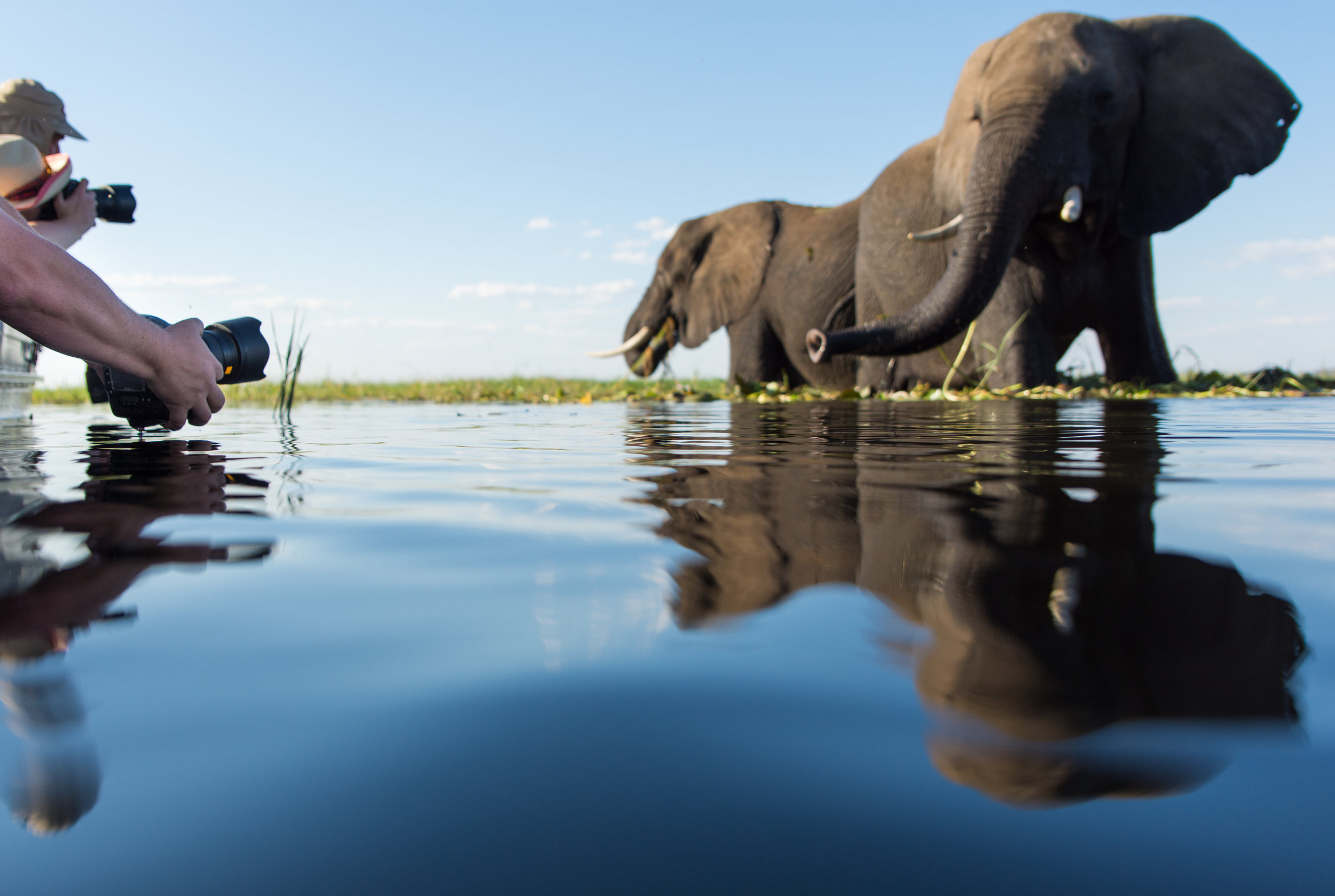 our best itineraries - botswana