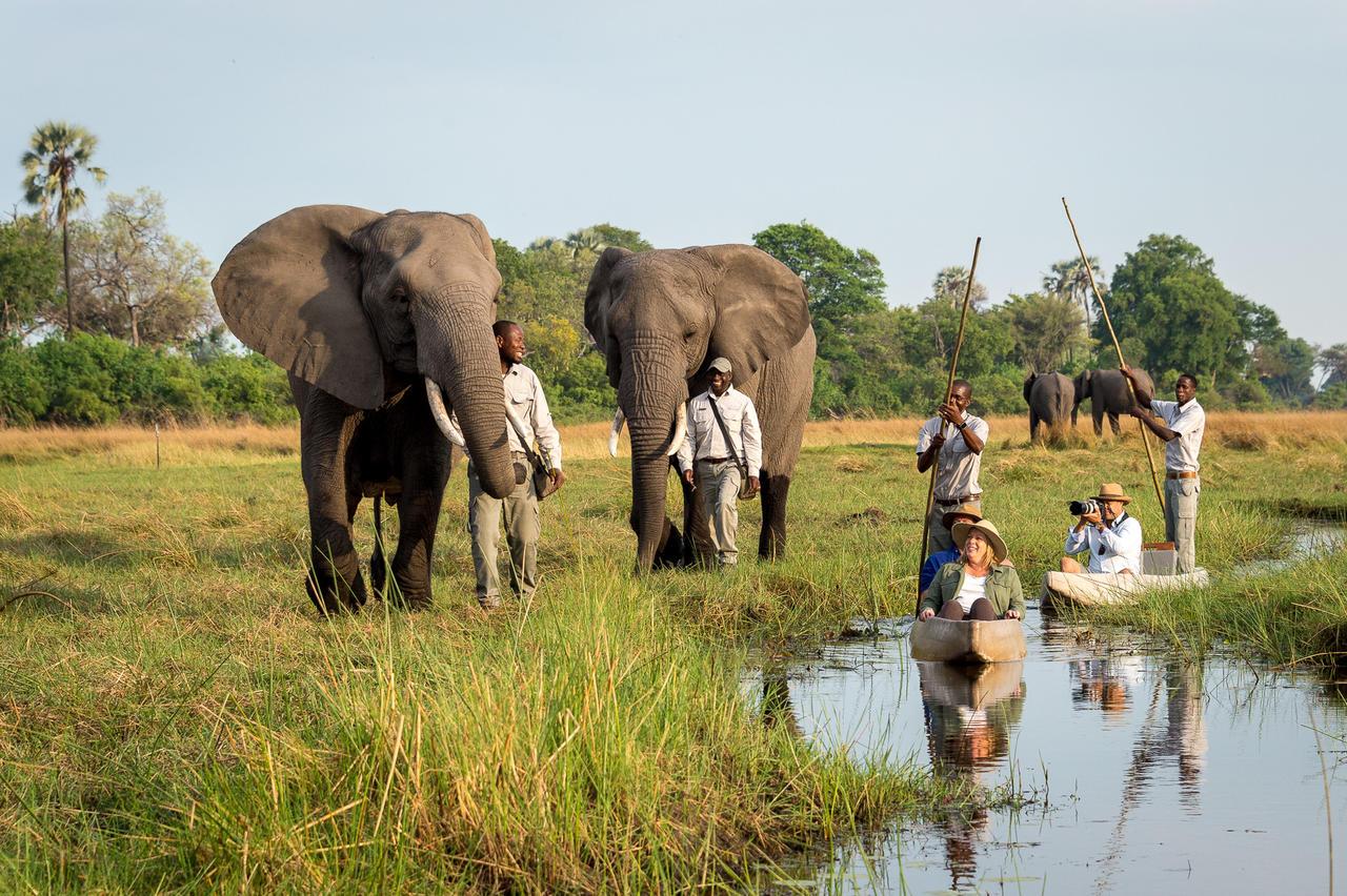 Abu Camp by Wilderness - Botswana