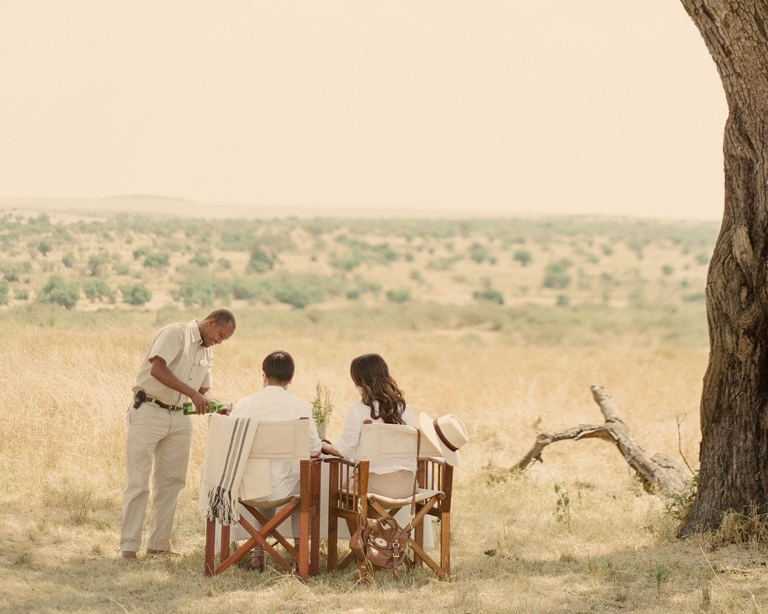 serengeti - tanzania - serengeti bushtops