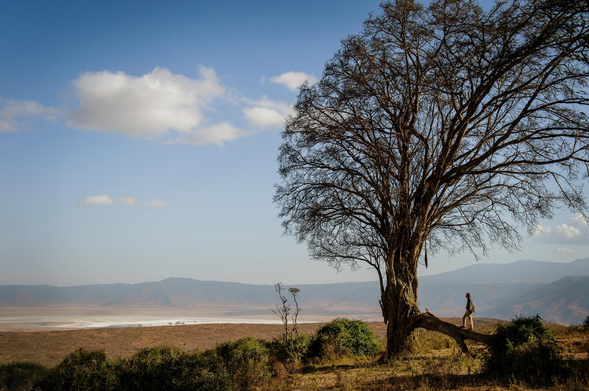 Ngorongoro Crater - Ang'ata Serengeti