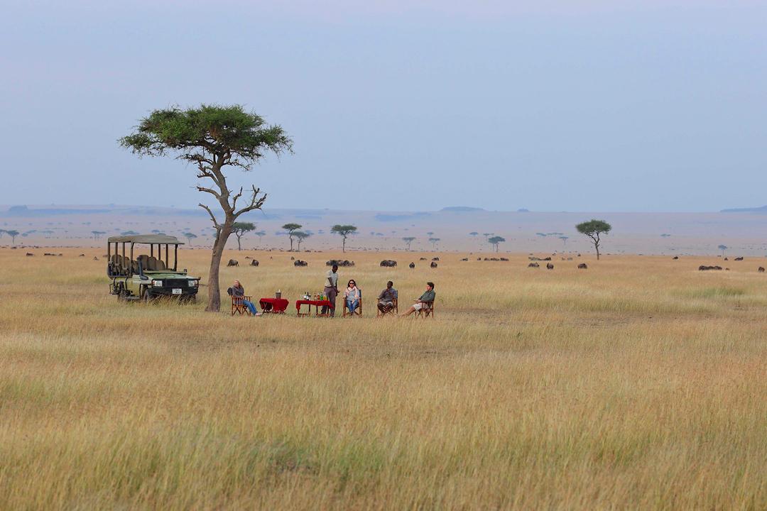 Lunch On Safari - Kimondo Migration Camp