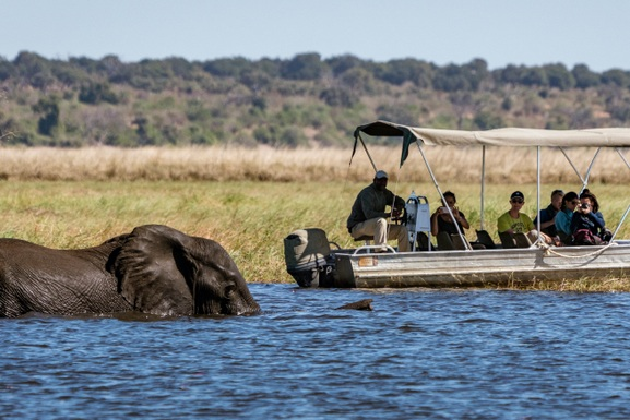 best_botswana_safaris.jpg
