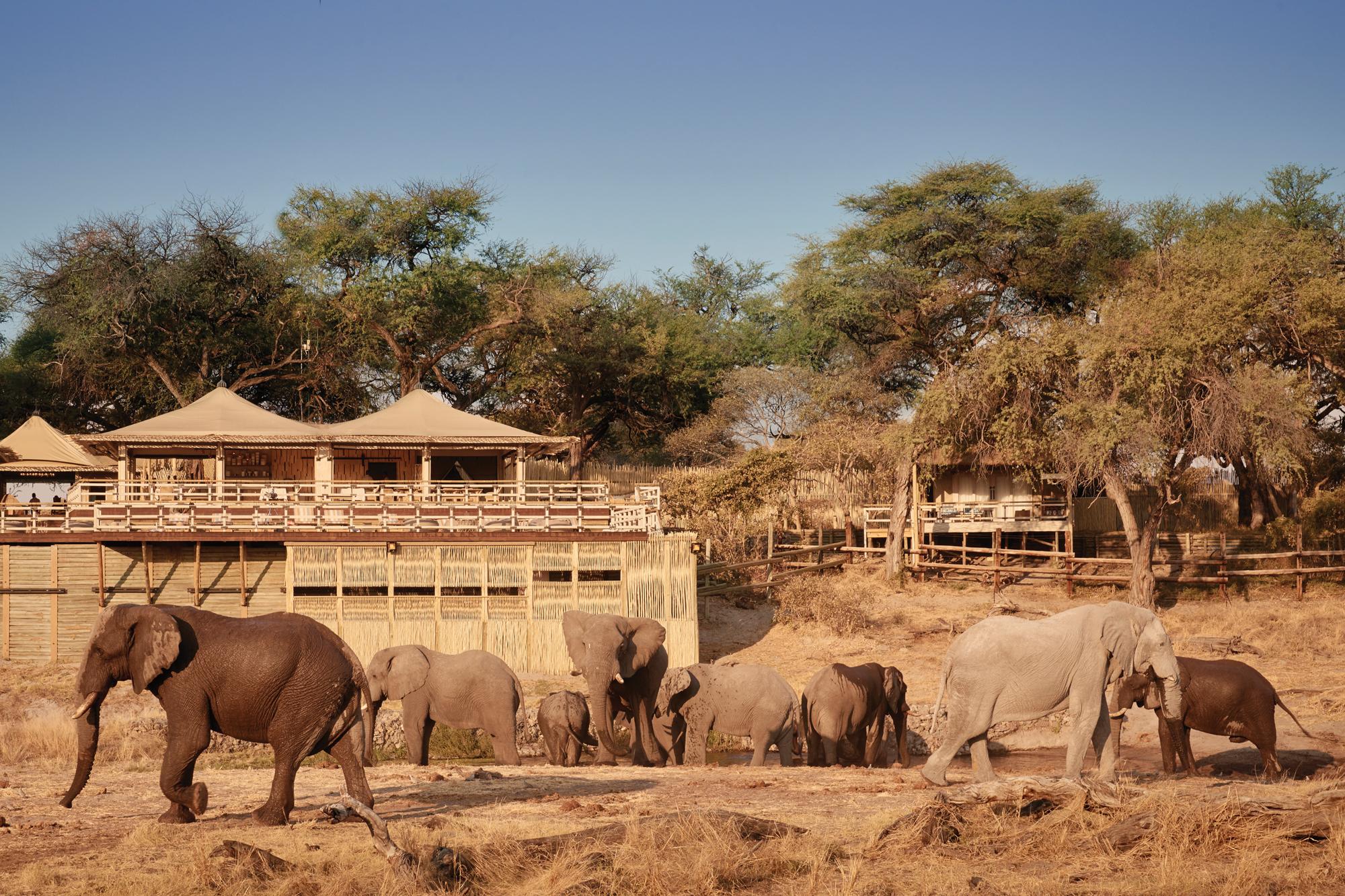 belmond portfolio - elephant valley lodge