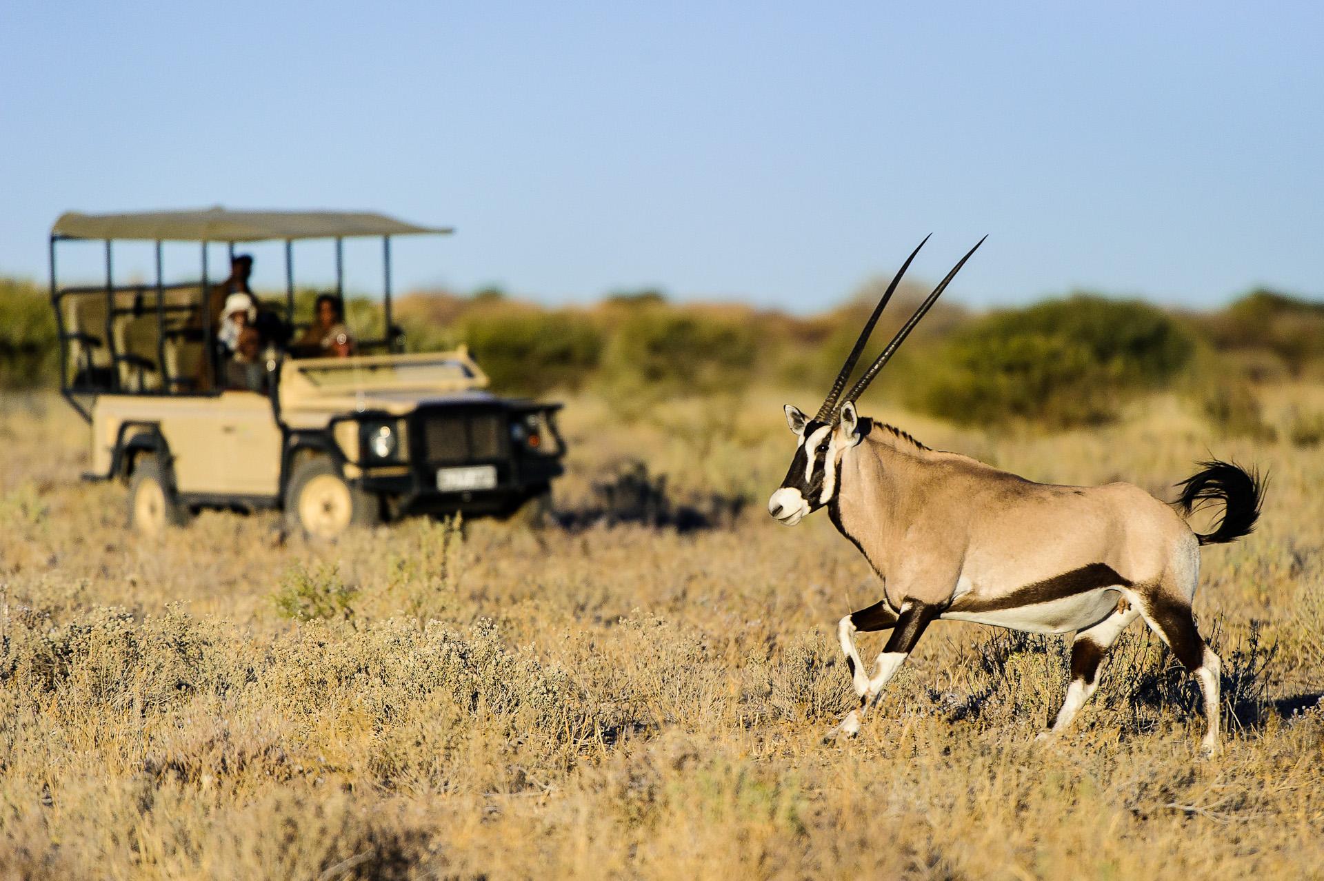 top african safaris - kalahari & makgadikgadi - classic