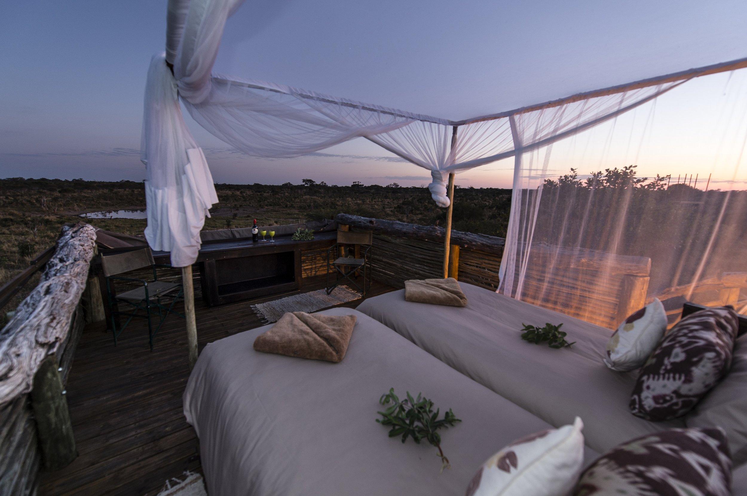 natural selection portfolio - sky beds