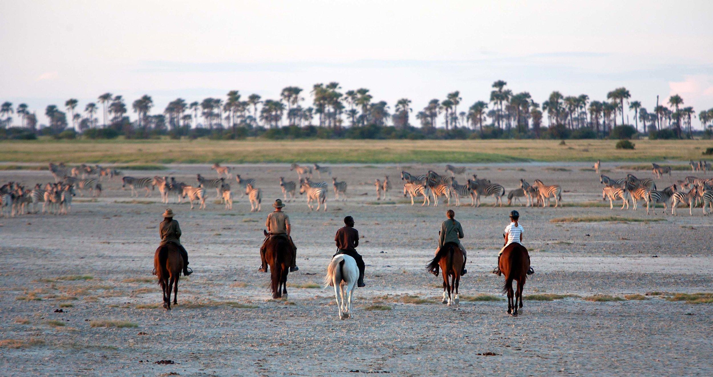 horse_safaris_4.jpg
