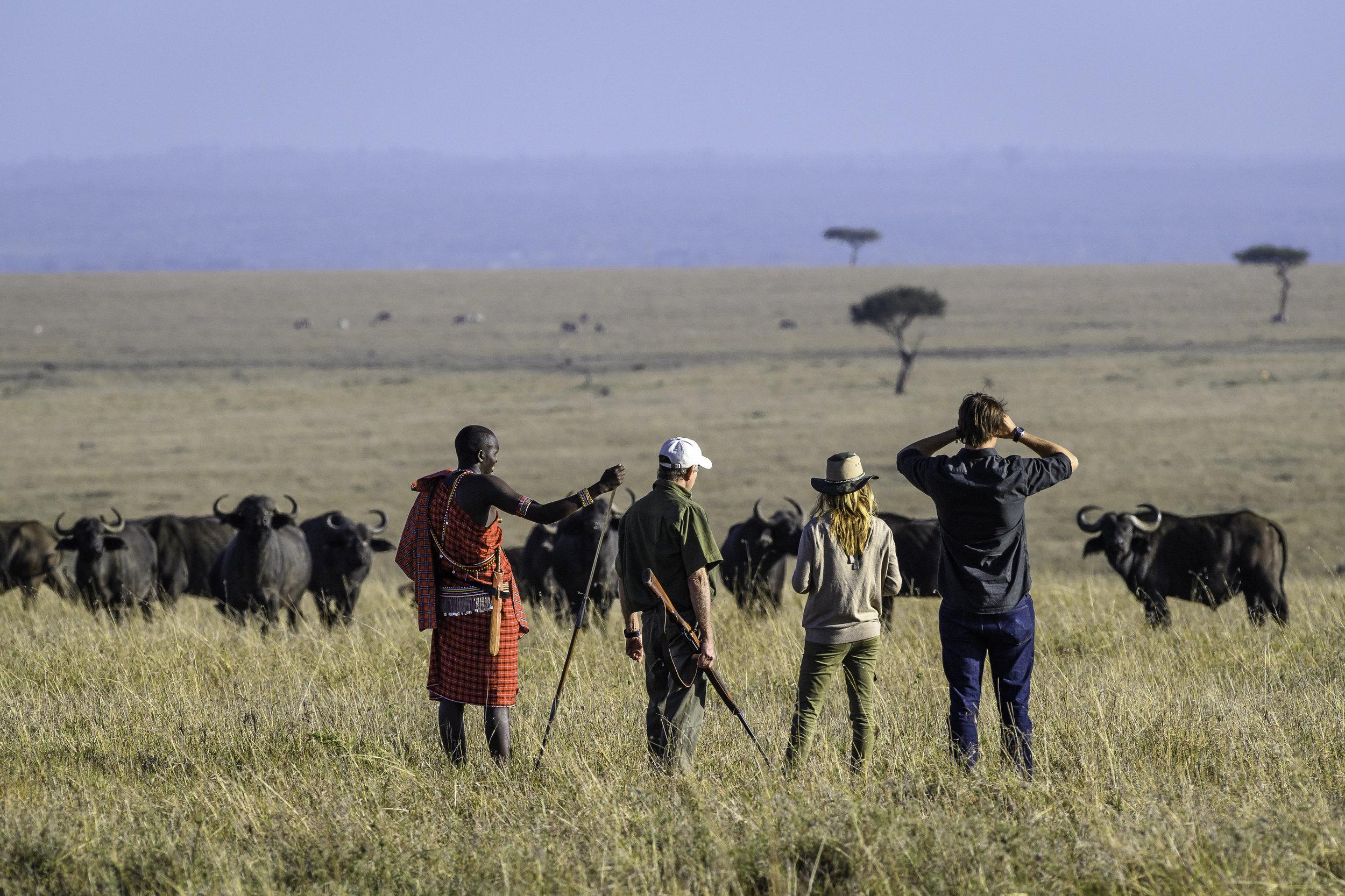 kenya luxury safari1