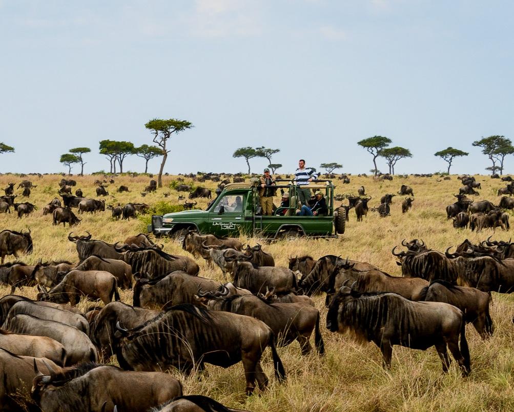 top kenya destinations - mara north & the serengeti