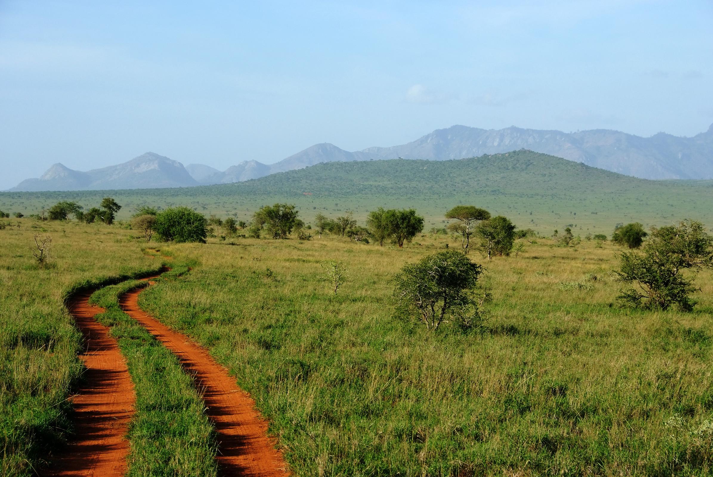 top rated kruger safaris - experiences
