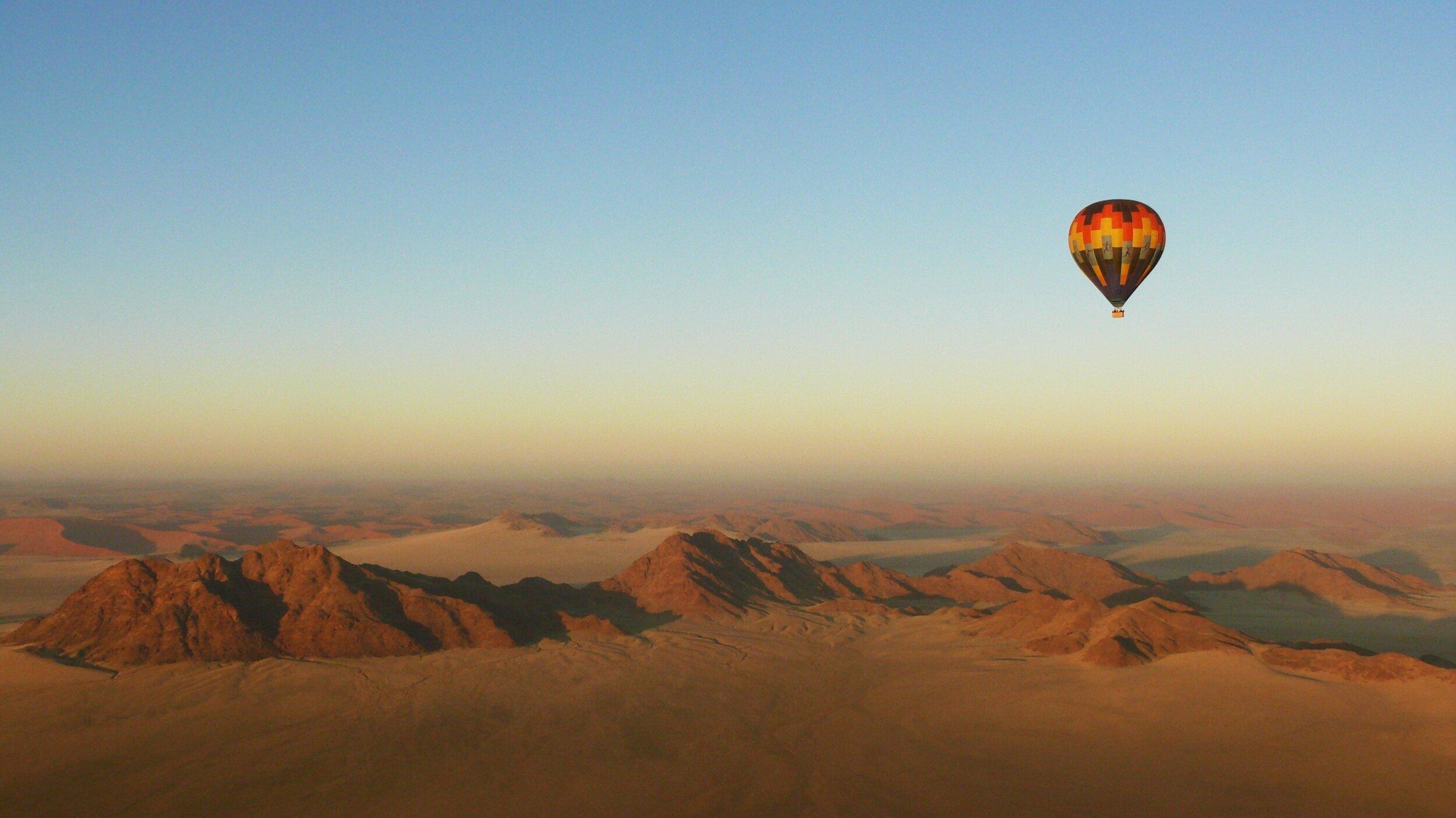 our best safari experiences - namibia experiences