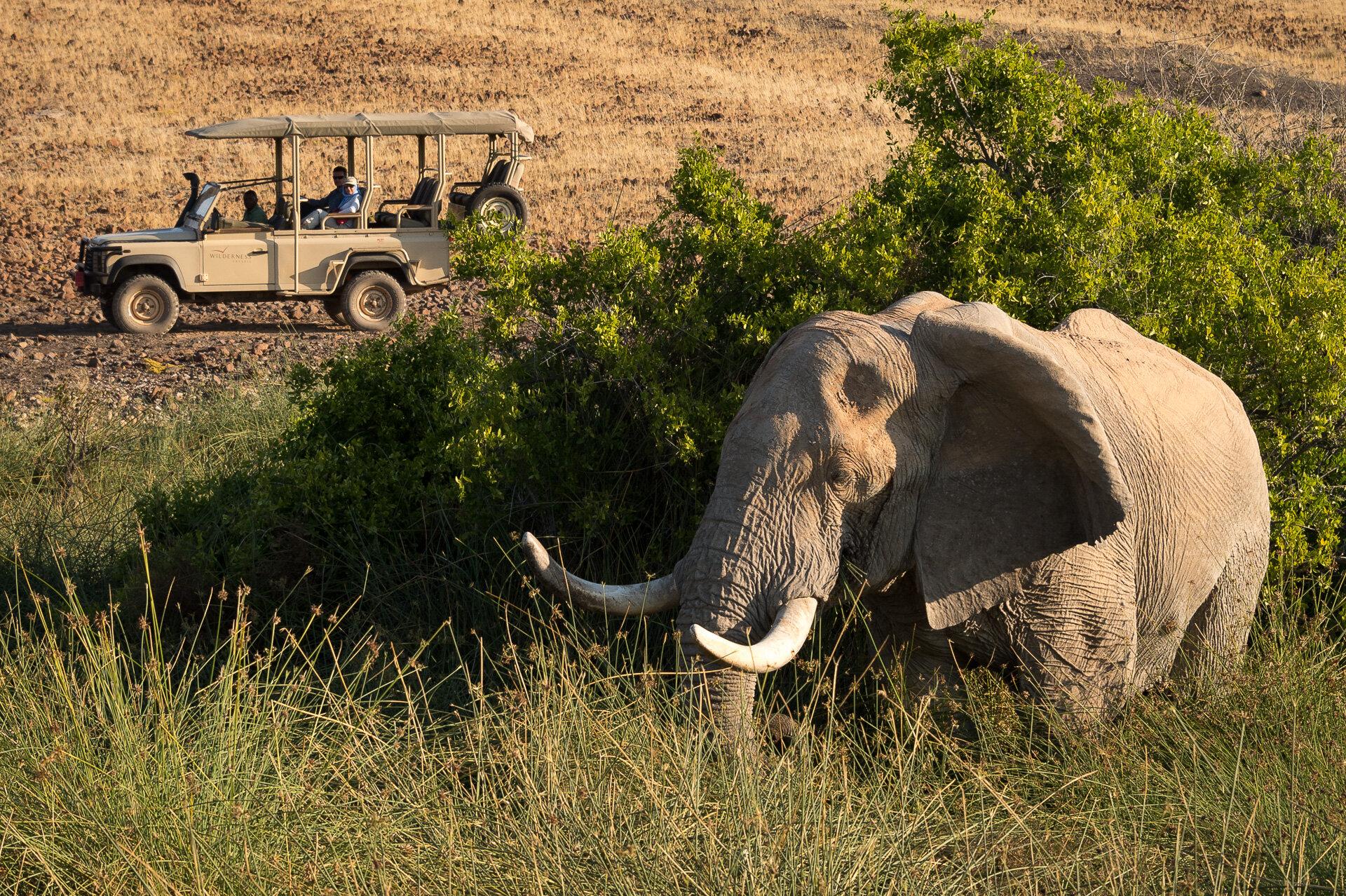 Desert_Rhino_Camp_2014-08-80e.jpg