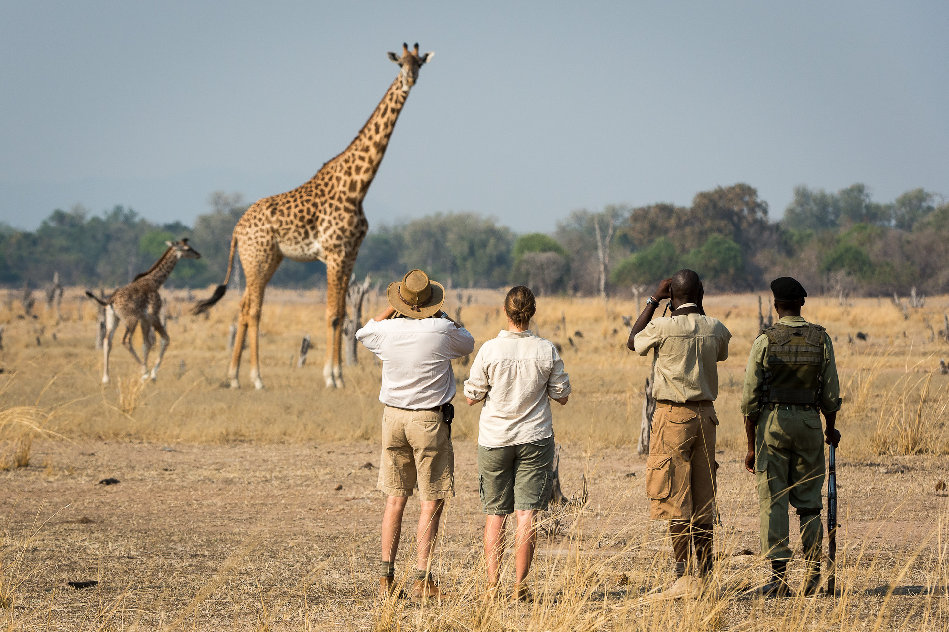zambia walking safaris - adventurer